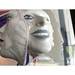 Acrylic Mask Sculpture